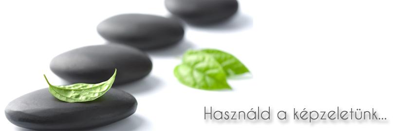 zen slider 1